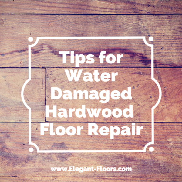 Repairing And Restoring Warped Hardwood Floors Elegant Floors